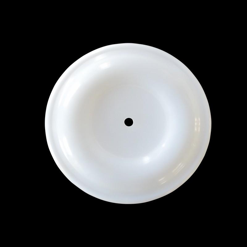 无边孔嵌入式进口F46膜片